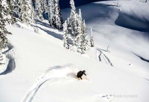 heliskiing, backcountry skiing, powder, bc, lodge, Bison Lodge, powder, snow